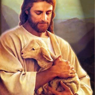 Jésus un très bon berger