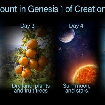 Le Dieu des phases