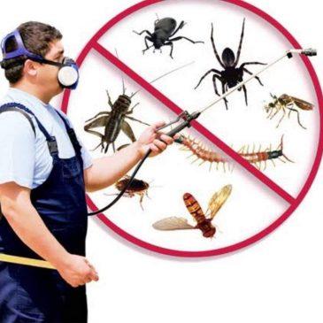 Votre dîme tue les parasites.
